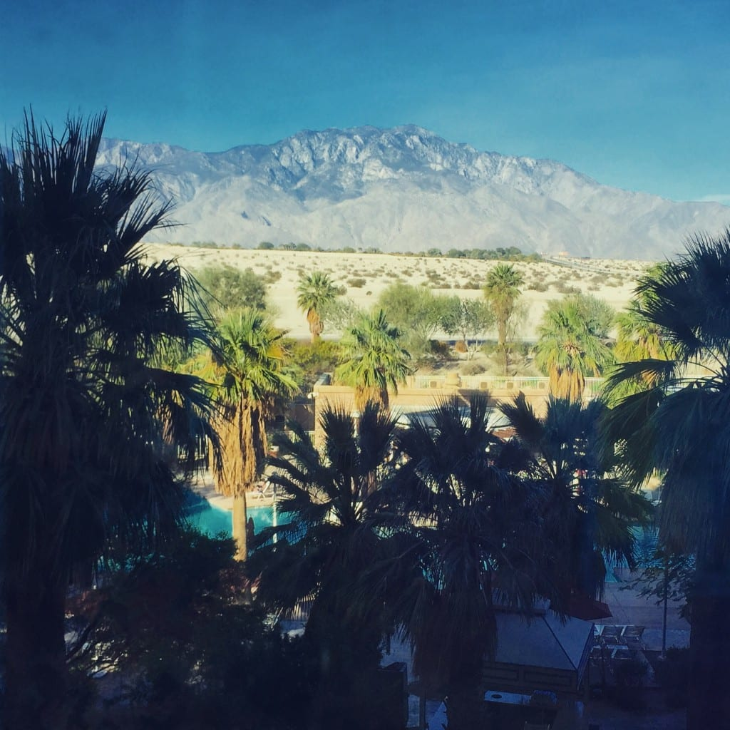 Taking in the beautiful Palm Springs scenery